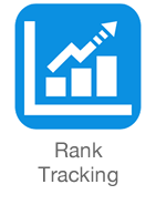 search engine rankings tracking
